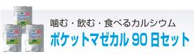 ポケットマゼカル90日コース